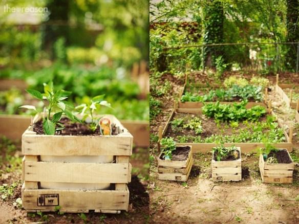 DIY Cajas de madera- jardin