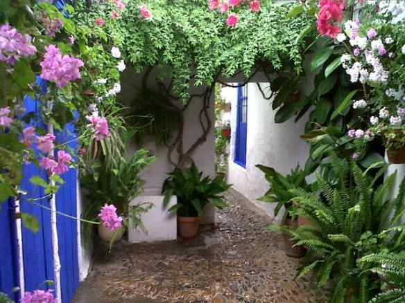 patio con puertas azules