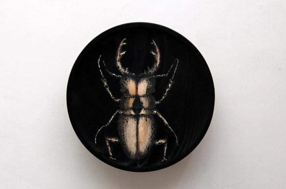 raul del sol escarabajo negro