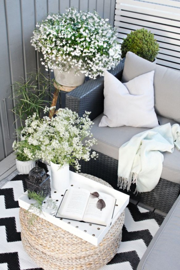 Jardin en el balcon 9