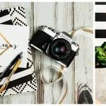 Dionne Kraus Photography, rebranding, business details, PNW photographer, Portland, Oregon, Photography, Nikon, Nikkor, film camera