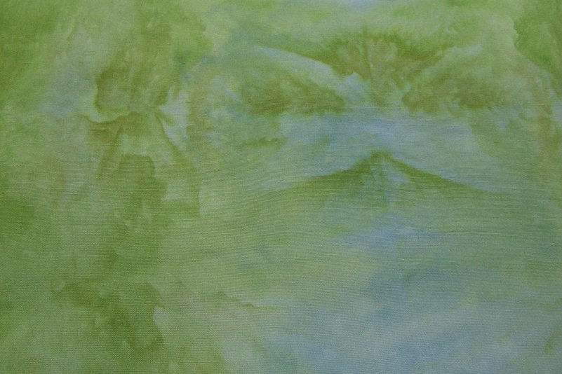 Snow Dyed Green Broadcloth #1