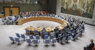 El Consejo de Seguridad vota resolución sobre el uso de armas químicas en Siria. Foto: ONU/Manuel Elías