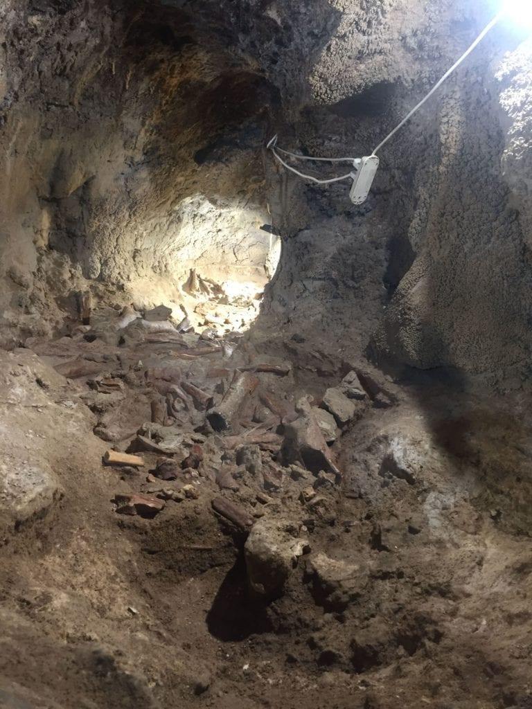 grotta-guattari-