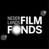 Jaarverslag Filmfonds 2013
