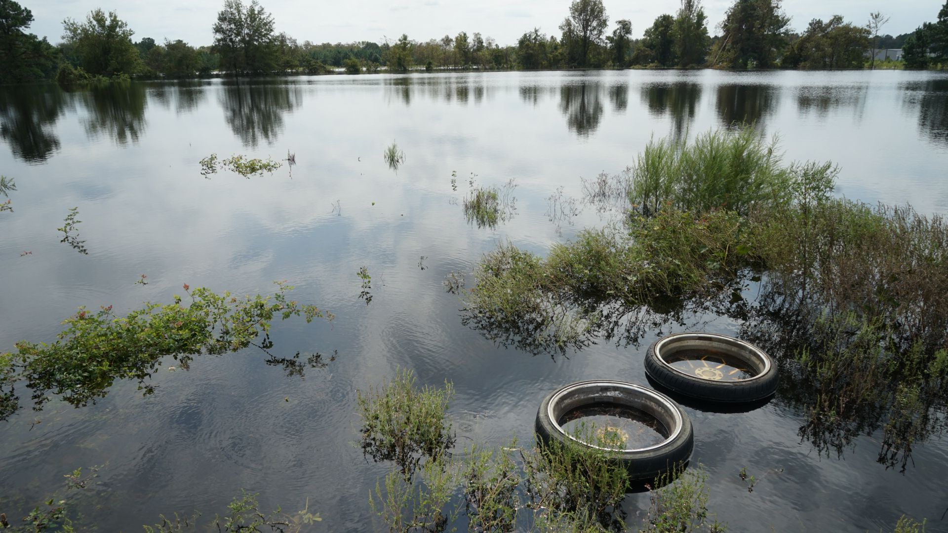 The waters of the Neuse River continued to rise on Friday, Sept. 21, flooding parking lots and infrastructure in Kinston, North Carolina. Hurricane Florence has left many people displaced and without power. (Lara Cooper/Direct Relief)