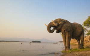 WorldVentures Expands into Zambia, Namibia