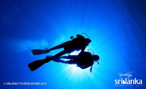 Diving in Sri Lanka