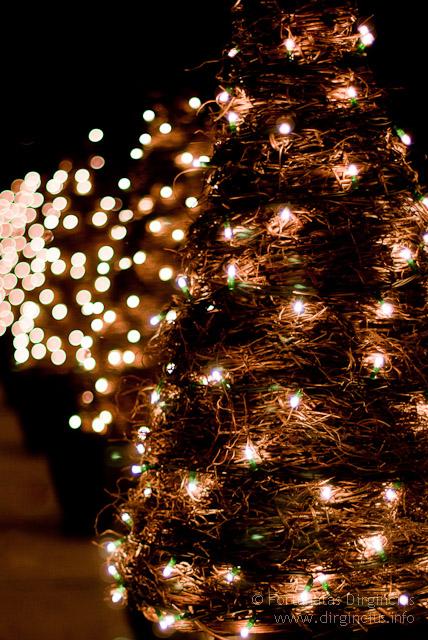 Kalėdų laikas prasideda | Christmas Time Begins