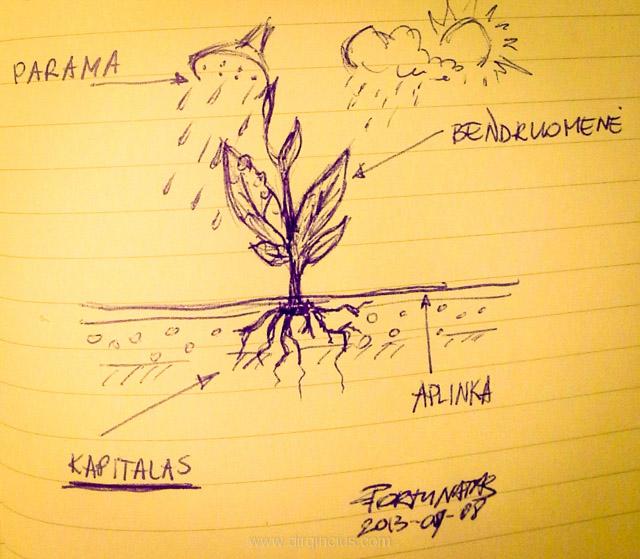 Bendruomenė-augalas
