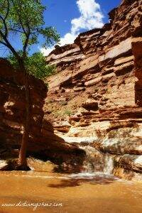 Capitol Reef Sulphur Creek Waterfall