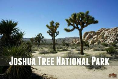 Joshua Tree National Park || Dirt In My Shoes