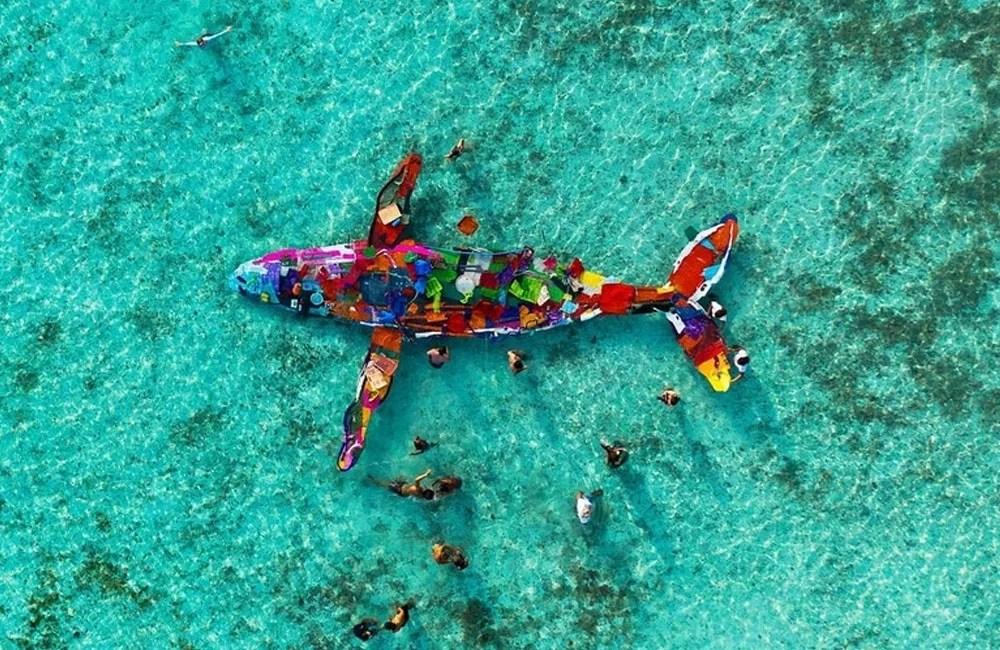 Bodalo-II-Plastic-Animal-Mare