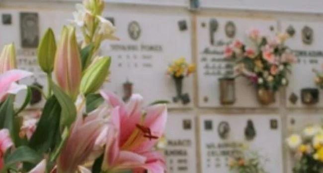 Servizi manutenzione cimiteri comunali