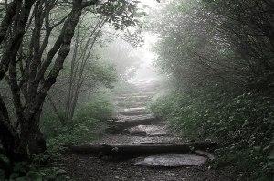 Spiritual Formation - Catholic Spiritual Direction 3