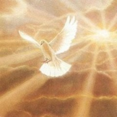 holy-spirit-medium-sized-pi-300x300 (1)