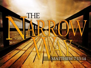 The Narrow Way - lonely path