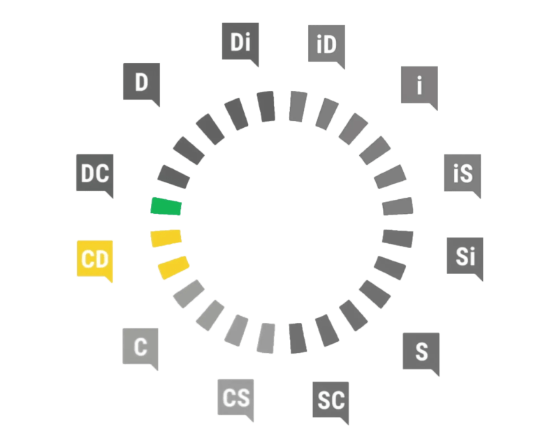 Profil Conscience - Dominant DiSC