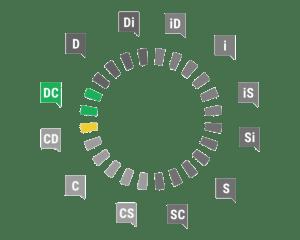 Profil Dominant - Consciencieux DiSC