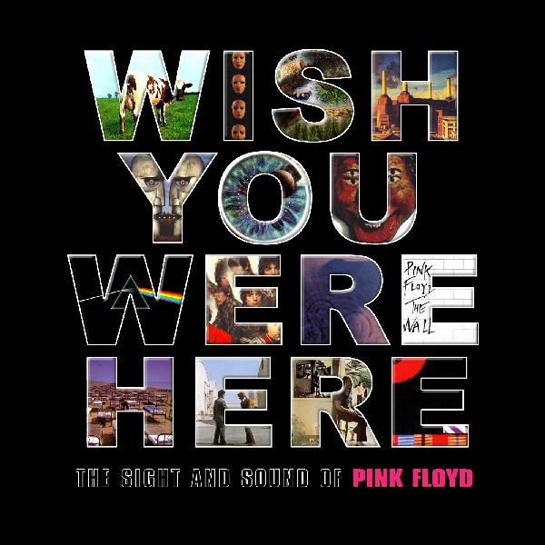 Pink Floyd Wish You Were Here Discomaraton
