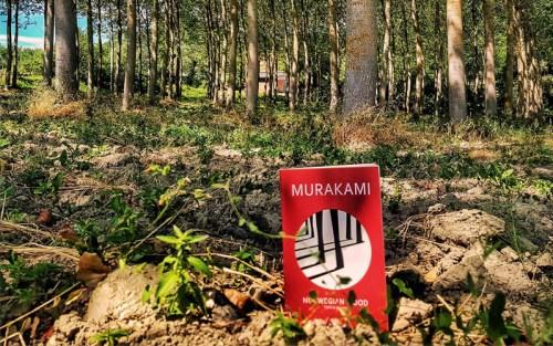 Il romanzo di Murakami Haruki, Norwegian wood, nella composizione di Andrea Ion Scotta