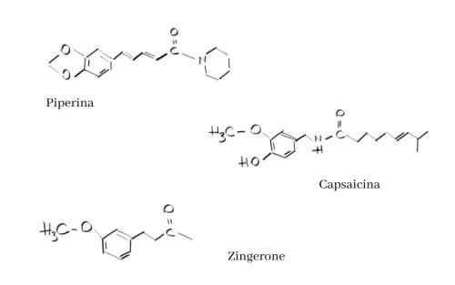 Zenzero, pepe e capsicum