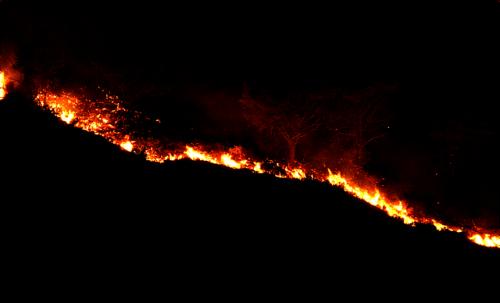 Negli studi sull'origine della scoperta del fuoco, la cui importanza è indiscutibile nella storia dell'uomo, gli incendi casuali hanno sempre un posto di rilievo tra le ipotesi più accreditate