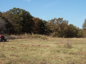 20-Acre lot in Okfuskee County Oklahoma #8