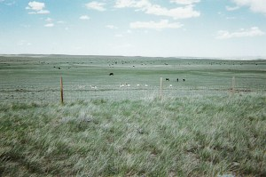 40-ACRES NATRONA COUNTY #1C ON STATE HIGHWAY 20/26