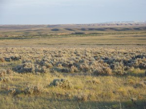 40-ACRES NATRONA COUNTY #2C ON STATE HIGHWAY