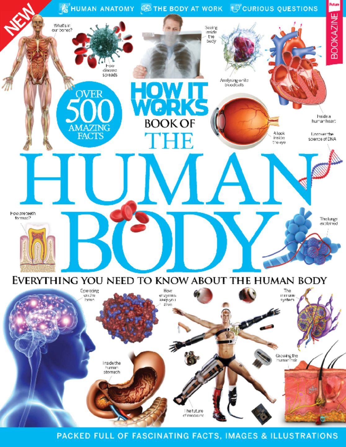 How It Works Book Of The Human Body Magazine Digital
