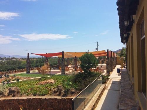 Bodegas F Rubio Winery Valle de Guadalupe