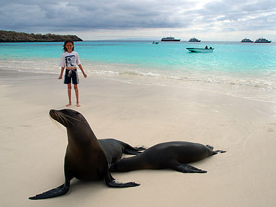Sea Lions on the beach, Hood Island, Galapagos