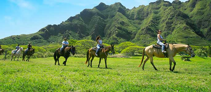 Explore the Lush Jungles of Kualoa Valley