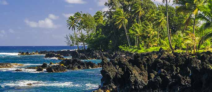 Scenic Lookout Points of Maui's Hana Highway