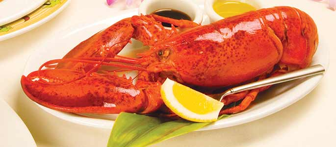 Fresh Lobster and Dining Options
