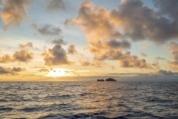 Kauai Stand-Up Paddle Board Adventure, Big Island Sunset Cruise, Molokai Ali`i Tour Maui Sunset Premium Dinner Cruise