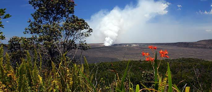 Hawaii Volcano Eco-Adventure & Helicopter Tour from Oahu