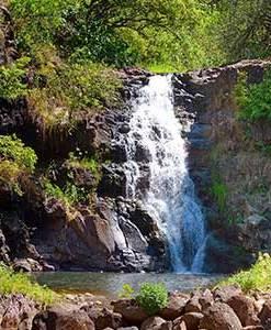 Oahu and Kona Islands Tour