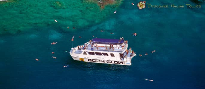 Big Island Snorkel and Dolphin Adventure Tour
