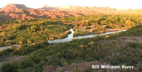 bill williams river web