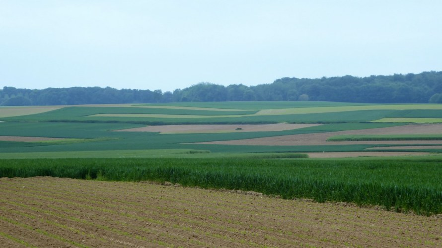 The farmland around Leefdaal