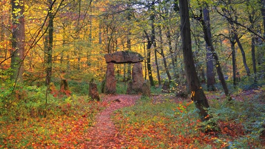 Stonehenge in  la Forêt de Soignes Belgium