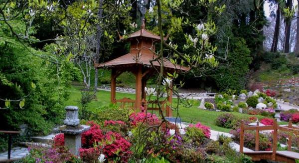 japanese gardens kildare ireland Japanese Gardens | Discovering Ireland Vacations