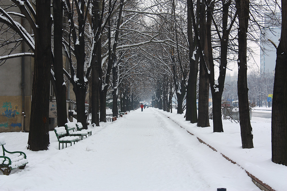 Skopje City Park Winter