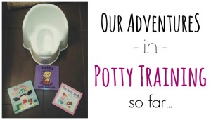 Our Adventures in Potty Training so Far…