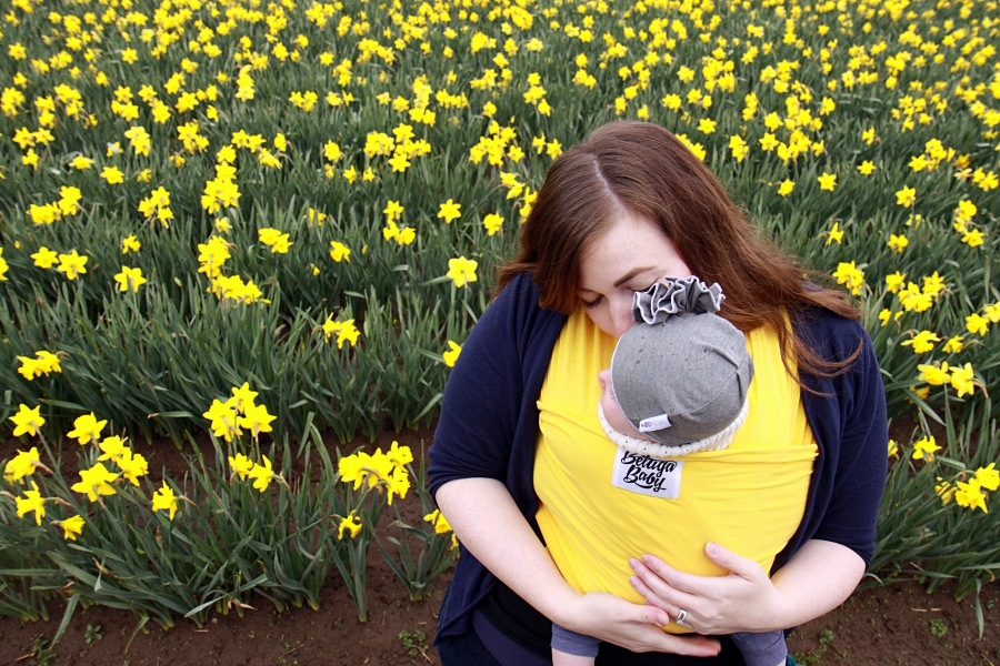 daffodils_05