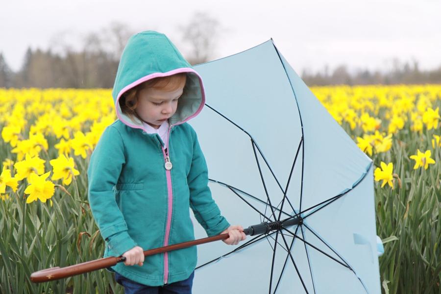 daffodils_09