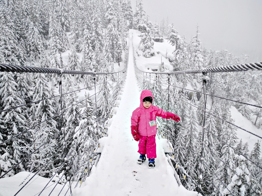 Go play outside: Sea to Sky Gondola suspension bridge