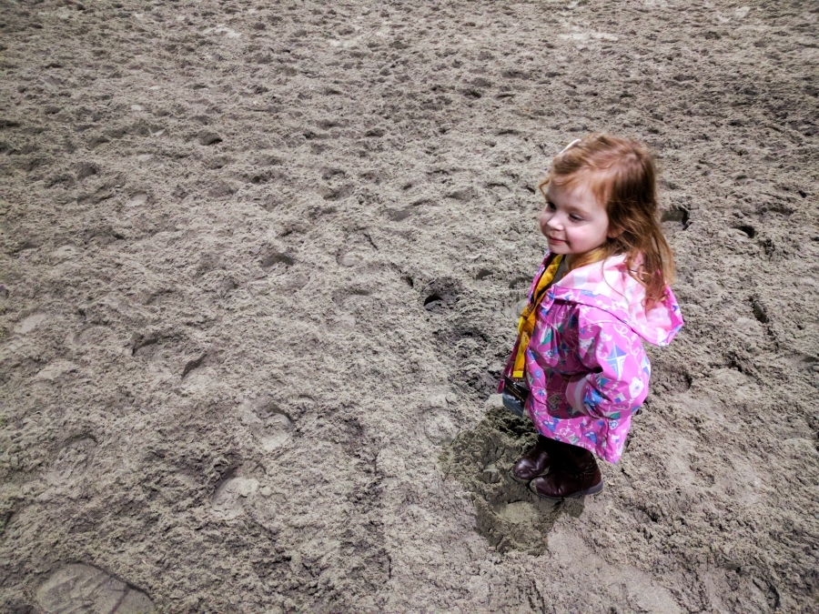 Cavalia Odysseo in Vancouver, preschooler during VIP experience standing on the sand mountain